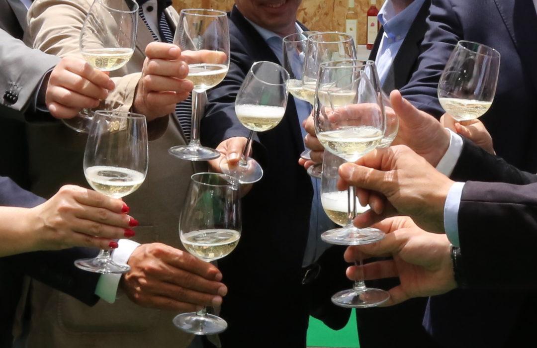 Vinho Verde Fest Festival Braga